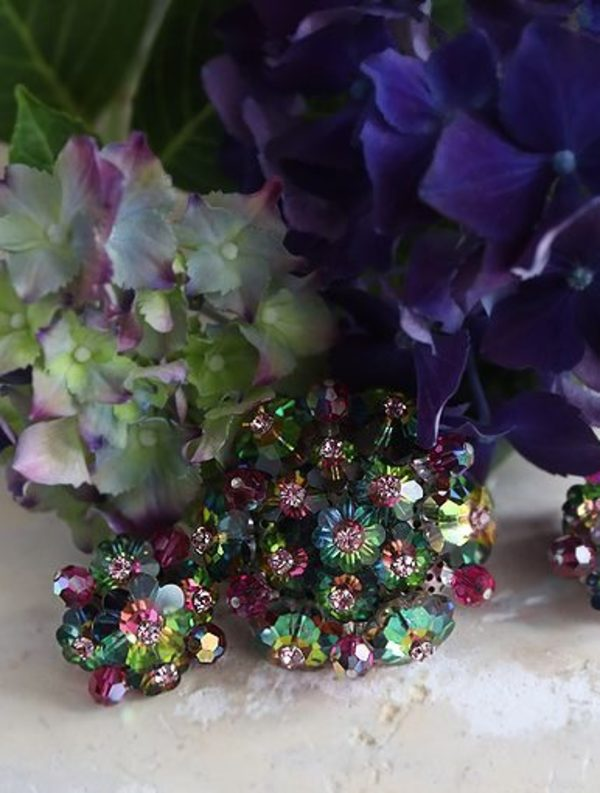 咲き始めの色どりの花サムネイル
