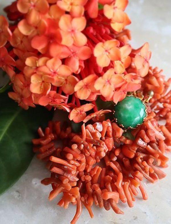 珊瑚の季節サムネイル